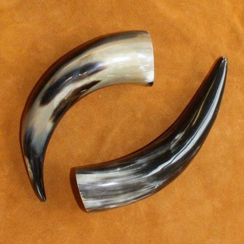 Properties of Horn