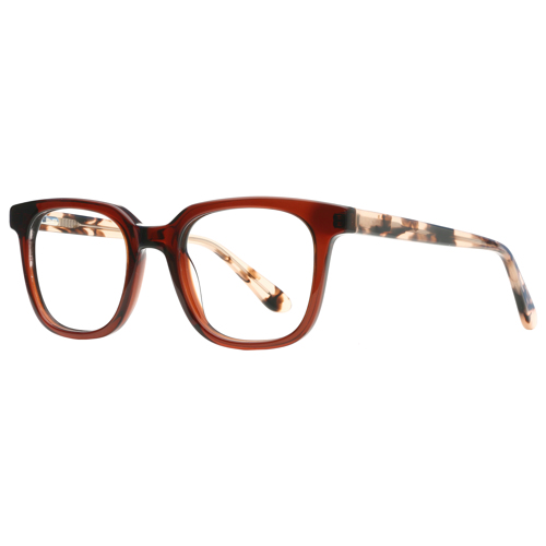 Saillon Full Rim Wayfarer 12346